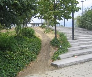 Learning from Desire Paths