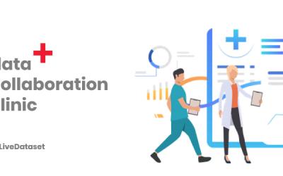 Data Collaboration Clinics